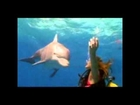 Bahamas Tourism Guide - Vacation Reviews, Resorts, Cruises, All Inclusive, Spas, Golf, Travel