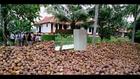 Travel To Care Philipkutty's Farm House Vechur Kerala India